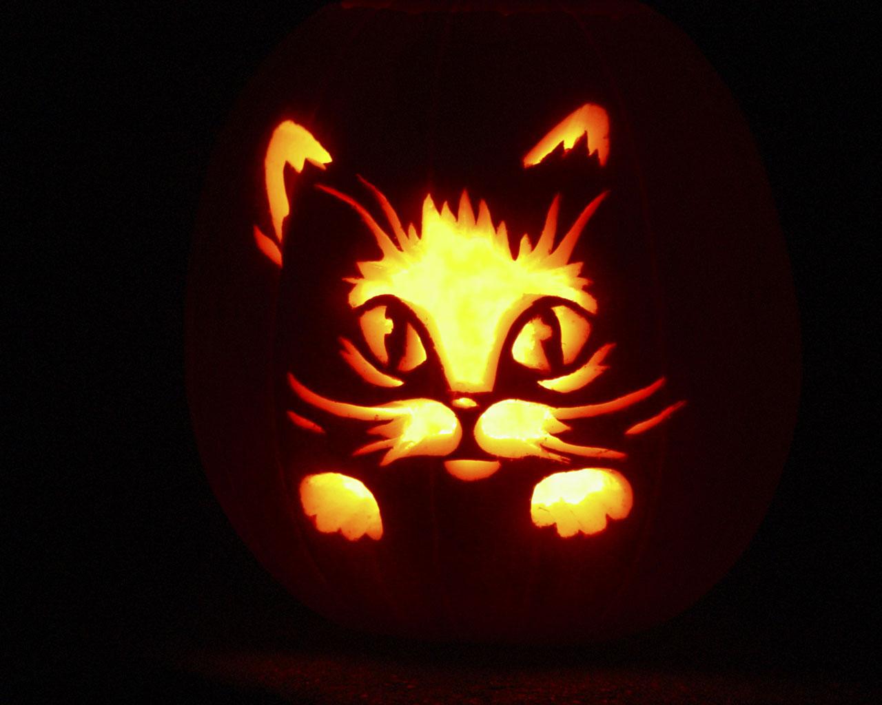 Cute Cat Pumpkin Stencils